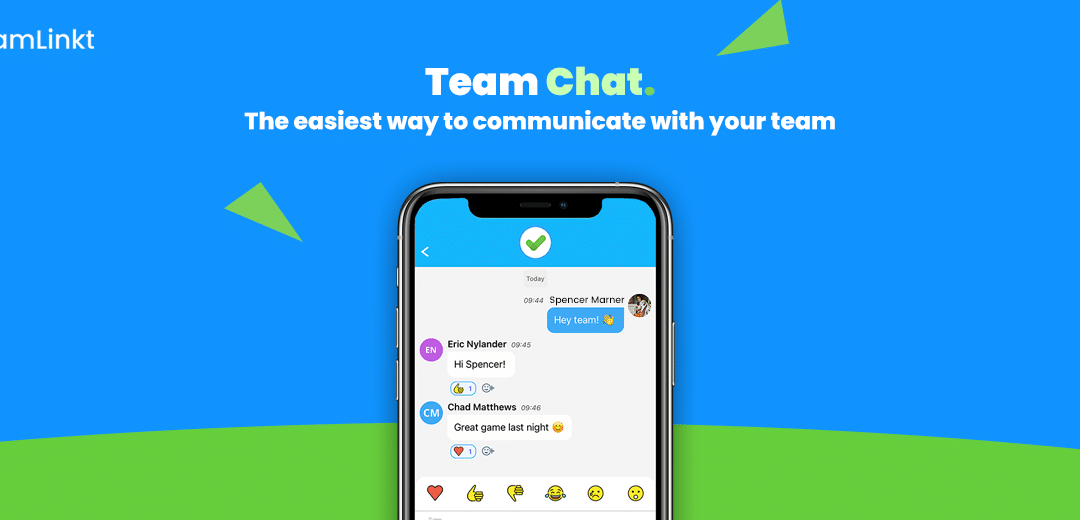 TeamLinkt Chat Section: Explained!