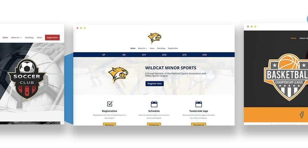 TeamLinkt Premium Website Option